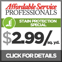 DC & MD Carpet Cleaning Coupon: Carpet Protection $2.99